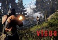 VIGOR: Neues Update steht bereit; Infos zu kommenden Updates